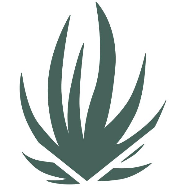 Aloe Plant Stamp
