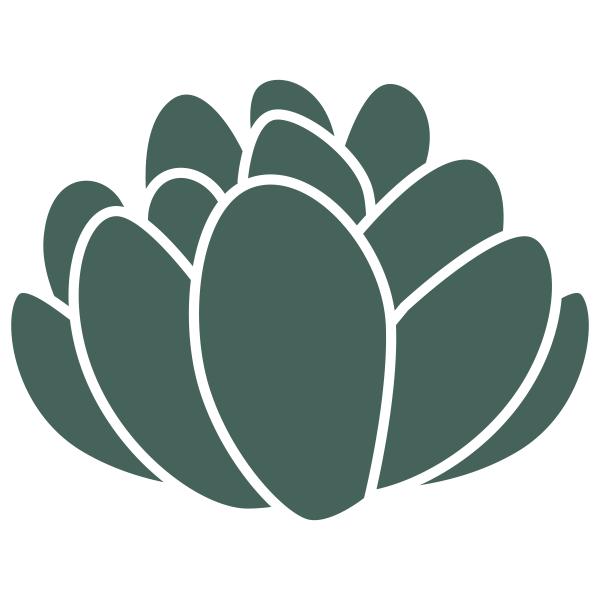 Echevaria Succulent Stamp