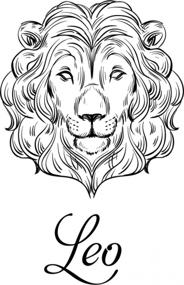 Modern Leo Illustration Hand Stamp