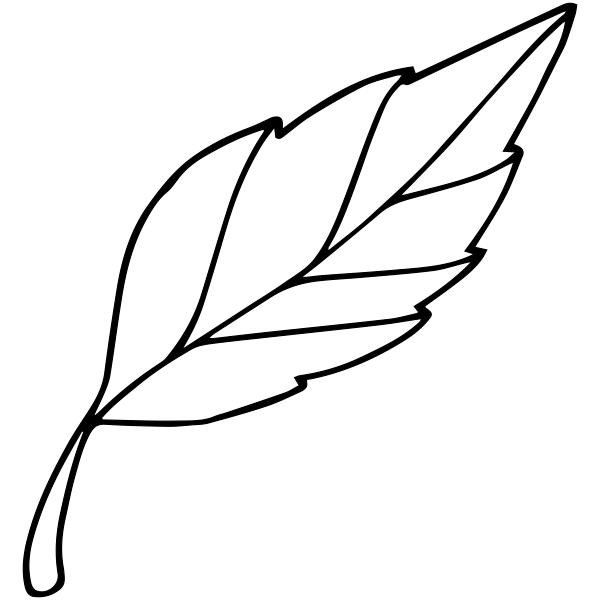 Fall Leaf Outline Stamp