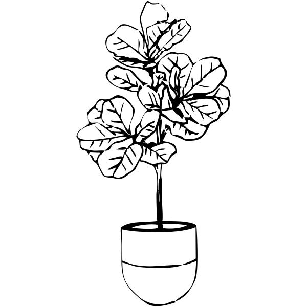 Fiddle Fig Tree Stamp