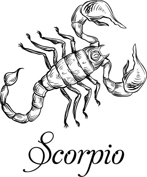 Modern Scorpio Illustration Hand Stamp